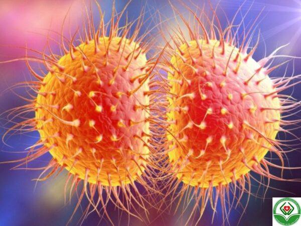 Cách chữa bệnh lậu dần gặp khó khăn do bị kháng thuốc
