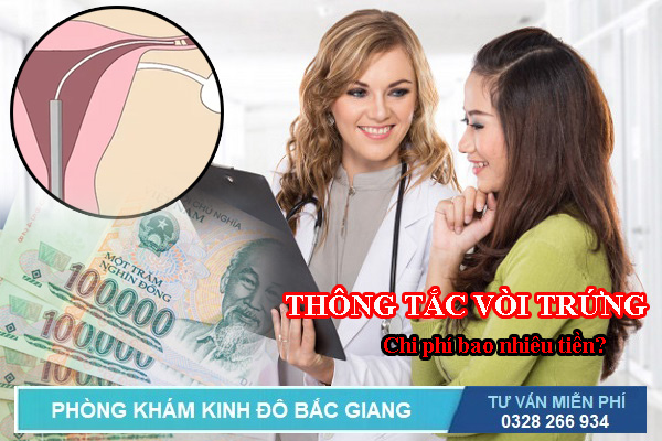 Thông tắc vòi trứng là gì? Chi phí thông tắc vòi trứng ở Bắc Giang